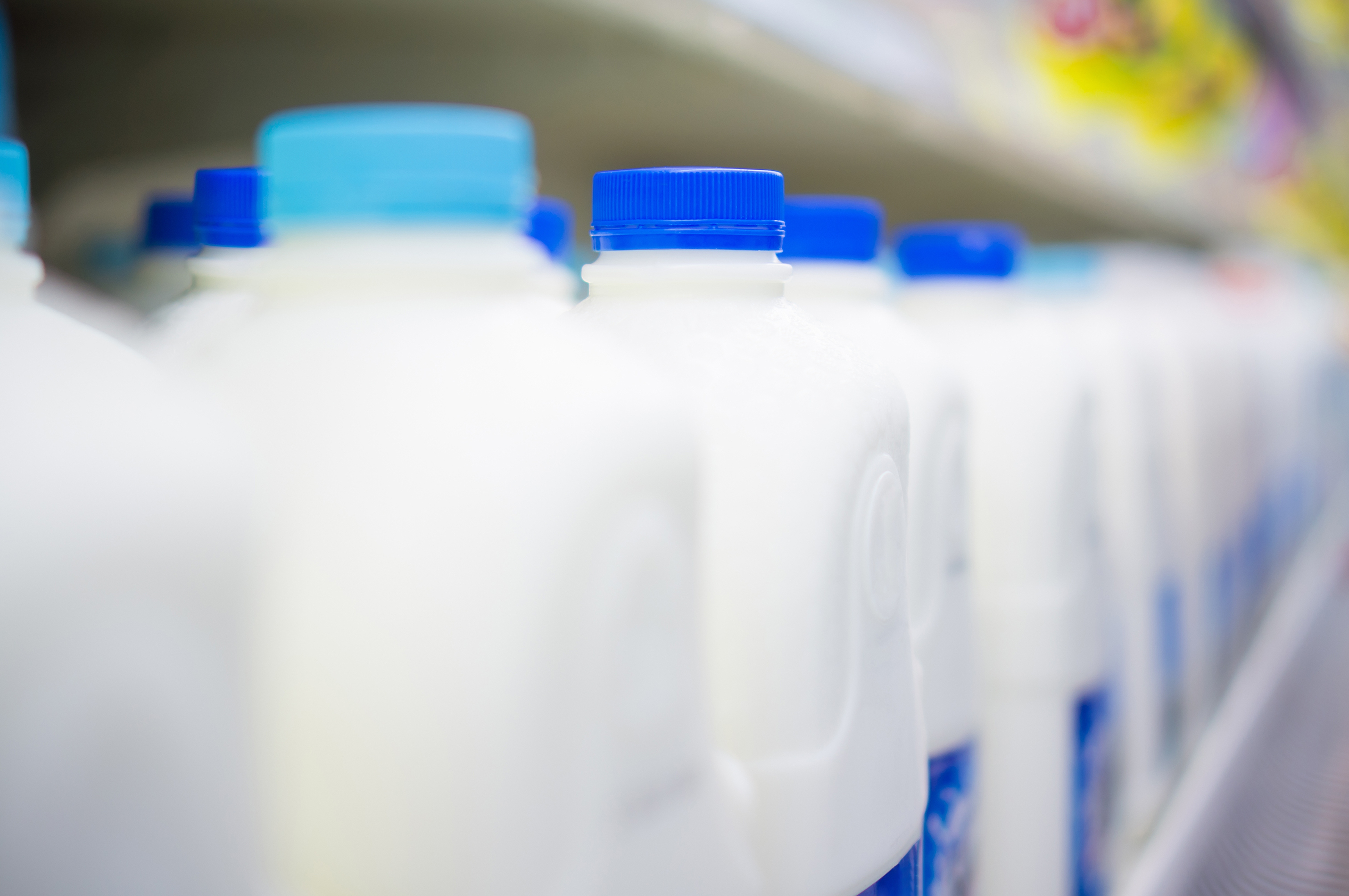 milk_jugs.jpg